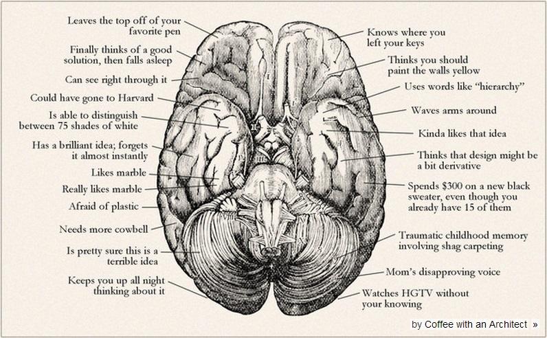 architect_brain