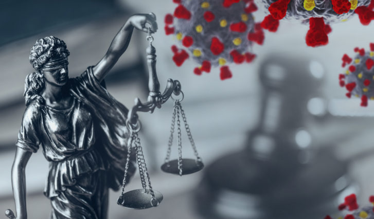 The Covid Litigation Experience and the New Normal